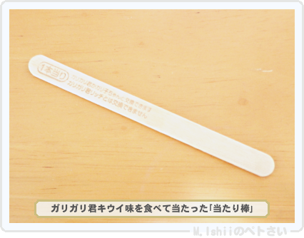 ガリガリ君03-2