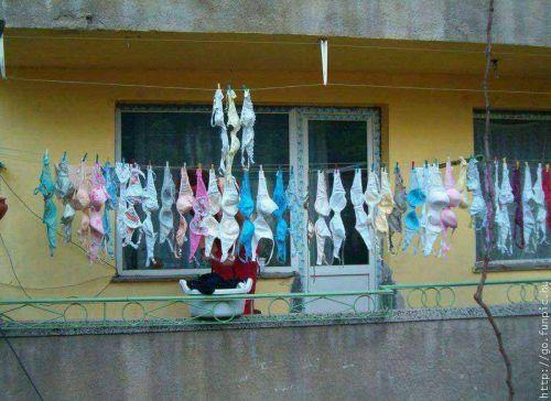 下着フェチの楽園!パンティやブラジャーの洗濯物盗撮エロ画像 34枚 No.4