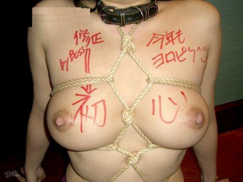 【画像】落書き肉便器なドM女をロープで緊縛して調教した時の達成感www 36枚 No.1