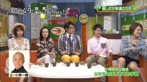 【TVキャプチャ】芸能人・女子アナのデルタゾーンパンチラエロ画像 32枚 No.10