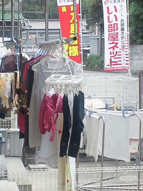 干した洗濯物マニア必見!パンティやブラジャーの盗撮エロ画像 35枚 No.7