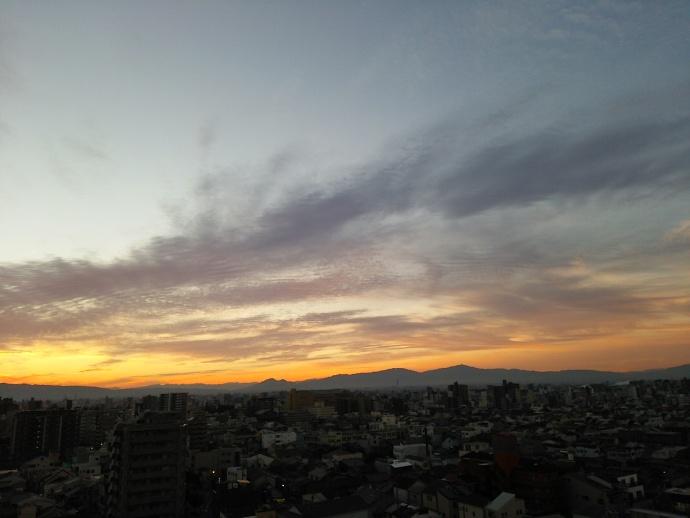 151101朝 (5)