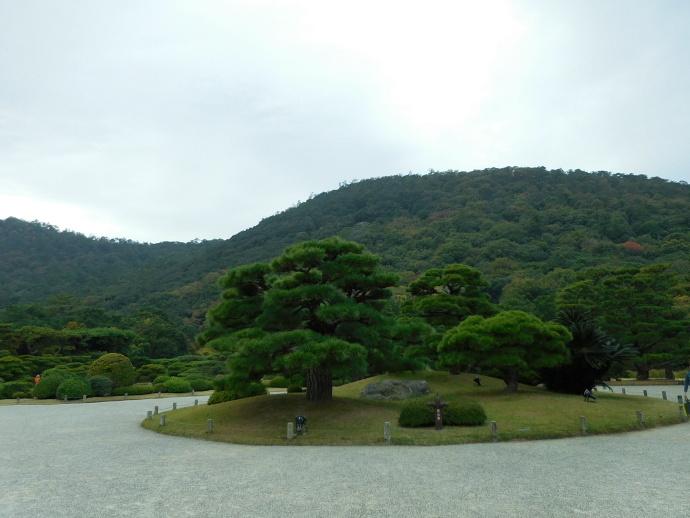 151106栗林公園 (2)