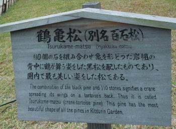 151106栗林公園 (4)