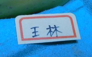 151205りんご (7)