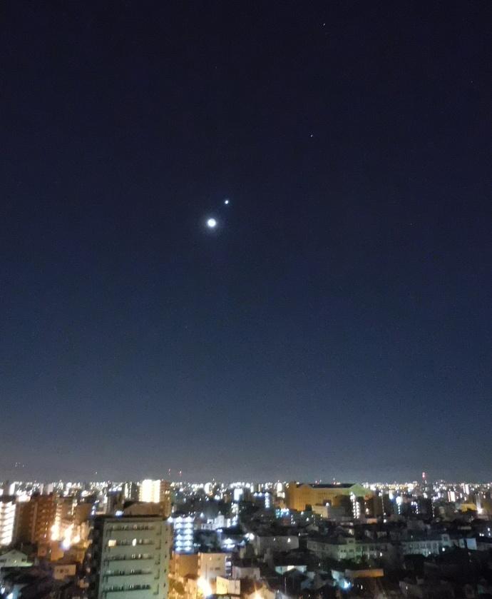 151208明けの明星 (2)