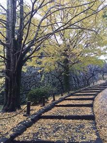 福岡城址。