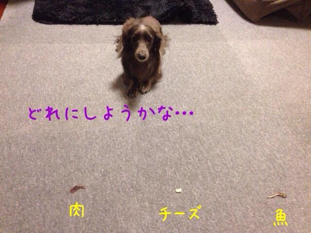 201511241138505b2.jpg