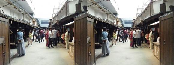 「大阪くらしの今昔館」なにわ町家の歳時記③(交差法)