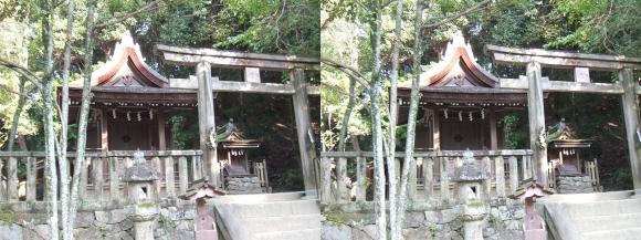 石上神宮 摂社 出雲建雄神社(平行法)