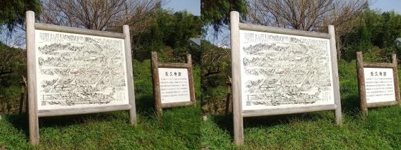内山永久寺跡(平行法)