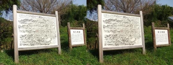 内山永久寺跡(交差法)