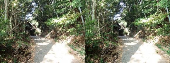 山の辺の道F-①(平行法)