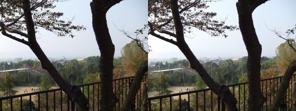 天理観光農園「峠の茶屋」②(平行法)