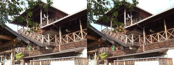 天理観光農園「峠の茶屋」①(交差法)