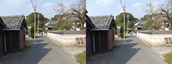 夜都伎神社①(平行法)