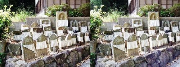 中山廃寺(平行法)