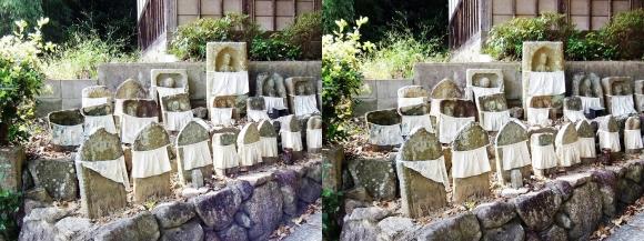 中山廃寺(交差法)
