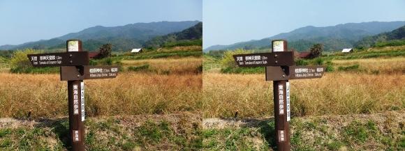 山の辺の道C-③(平行法)