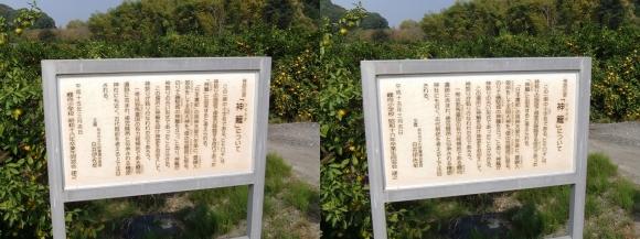 山の辺の道B 神籬①(平行法)