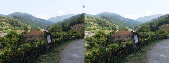 山の辺の道B-①(平行法)