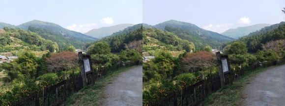 山の辺の道B-①(交差法)