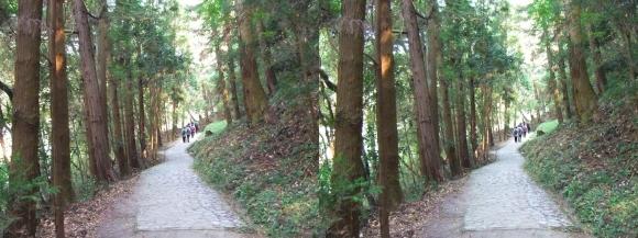 山の辺の道A-④(平行法)