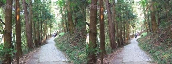 山の辺の道A-④(交差法)