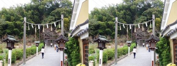大神神社 末社 久延彦神社(平行法)