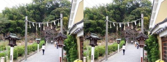 大神神社 末社 久延彦神社(交差法)