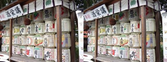 大神神社 酒栄講 奉献 樽酒(平行法)