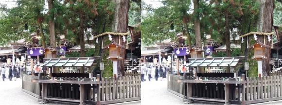 大神神社 巳の神杉(平行法)