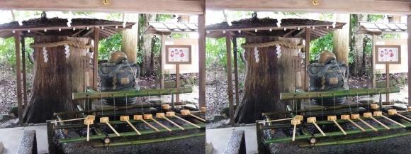 大神神社 手水舎(平行法)