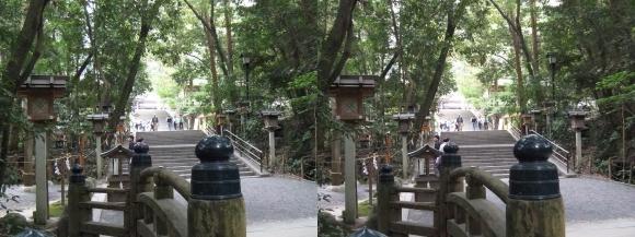大神神社 参道①(交差法)