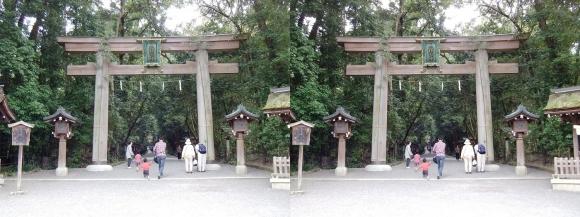 大神神社 二の鳥居(交差法)