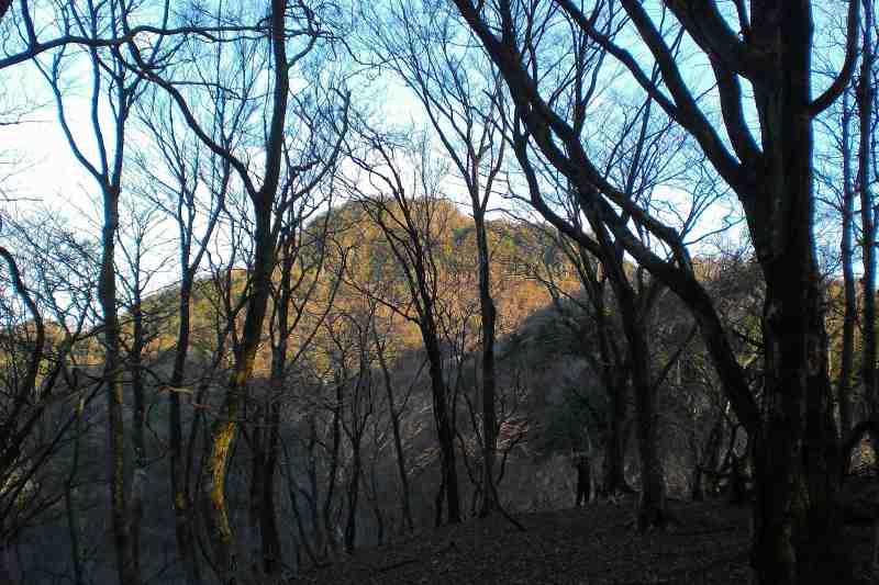 英彦山 峰入り古道 (4)