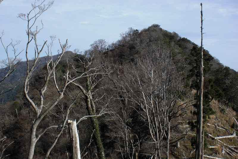 英彦山 峰入り古道 (37)