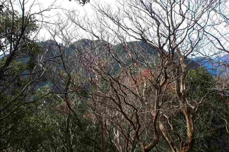 英彦山 峰入り古道 (47)