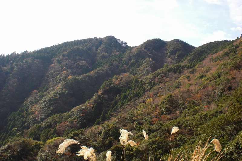 英彦山 峰入り古道 (48)