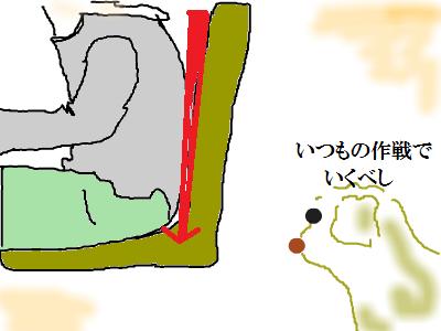 snap_namira229_2015113204740[1] - コピー (2)