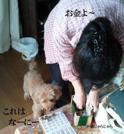 DVC00467 - コピー
