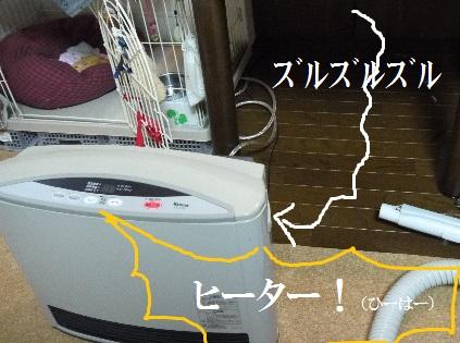 P1420903(1).jpg