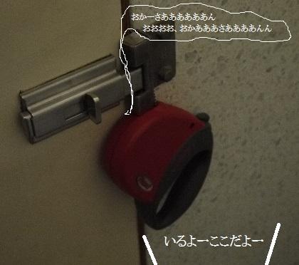 P1430451(1).jpg