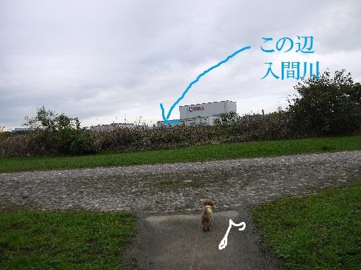 P1430496(1).jpg