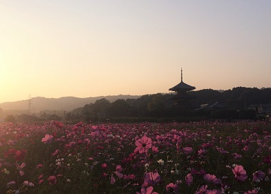 20151024hokiji.jpg