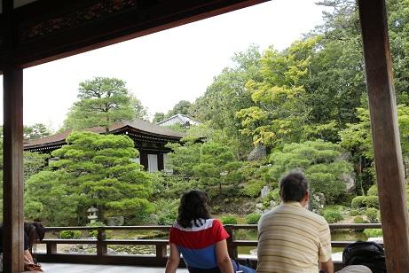 仁和寺の庭