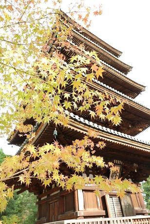 仁和寺の五重塔.