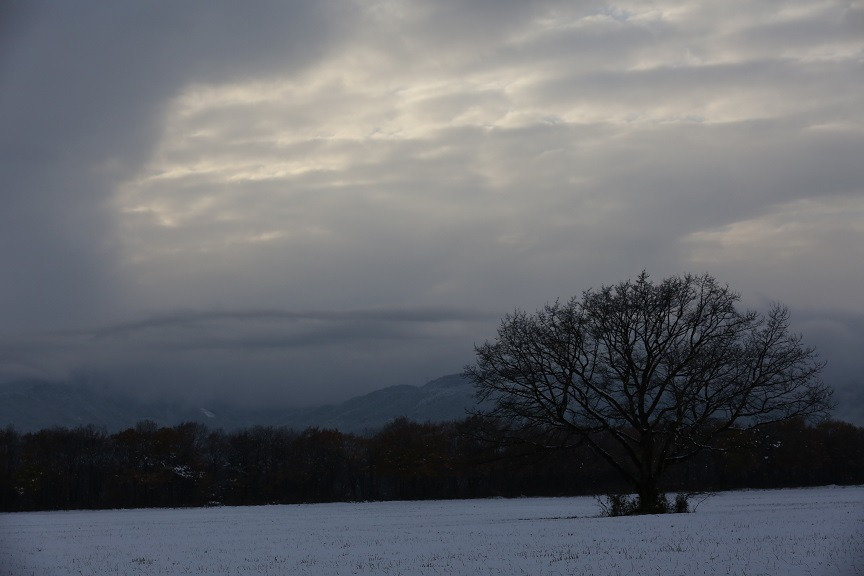 2016 11 24 夕景の雪景色.jpg