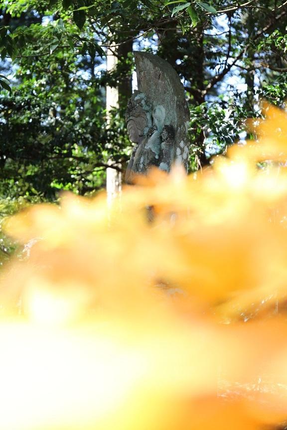 2016 11 23 雲照寺の仏様 ブログ用.jpg