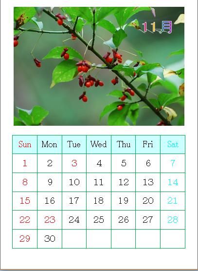 平成27年11月カレンダー